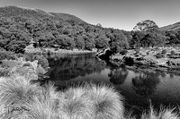 Thredbo River at Thredbo Diggings