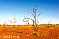 Sticks and Stones, Upper Gascoyne