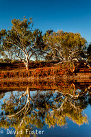Cattle Pool (Goolinee), Mount Augustus, Upper Gascoyne