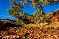 Kings Creek, Kings Canyon, Watarrka National Park