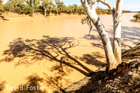 Barcoo River, Outback Queensland