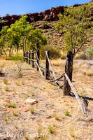 Old Fence at Kathleen Springs, Watarrka National Park